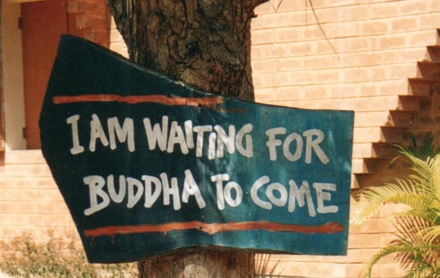 INDIA DEL SUD: AYURVEDA (CON CAUTELA) E NON SOLO
